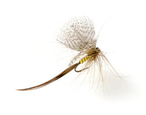Halford style mayfly