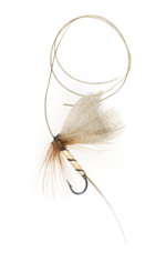 Straw bodied mayfly
